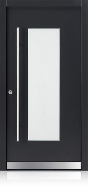 DS 1009